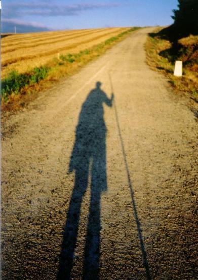 la-sombra-es-el-camino